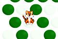 Trap the Tiger