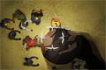 Insectonator: Zombie mod