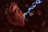 The Last Heart