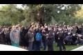 Polis VS studenter vid UC Davis